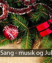 sang-musik-jul